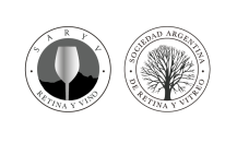 Diseño de Logo para Programa